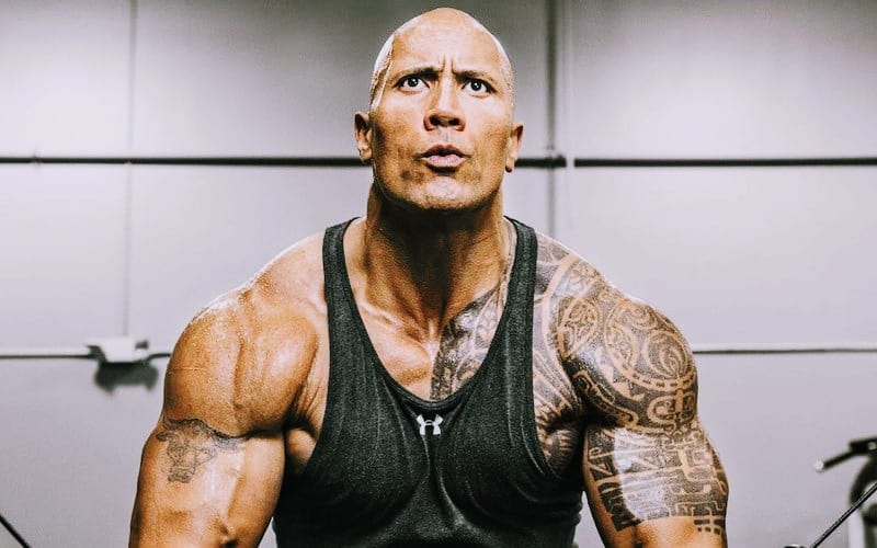 Dwayne Johnson The Rock Weight Height Daughters
